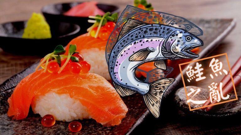 你跟風了嗎?壽司郎之鮭魚之亂
